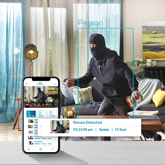 Indoor camera with person motion detector